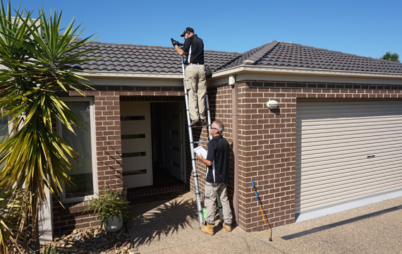 Pre-Purchase Building & Pest Inspection - Termite & Pest Control Albury Wodonga